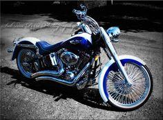 Harley Blues - Photo taken by Me.  Sabrina Perri  harley blue
