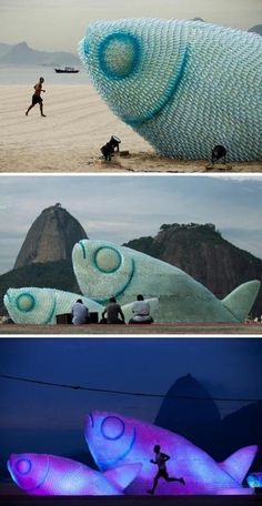 The giant fish in beach 7-23