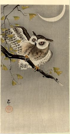"""Owl on ginkgo branch (Scops owl under crescent moon)"" by Ohara Koson, c.1915"