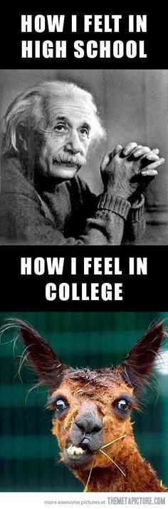 So so accurate.
