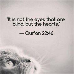 #Qur'an, 22:46, #ver