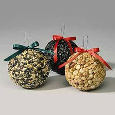 birdseed balls