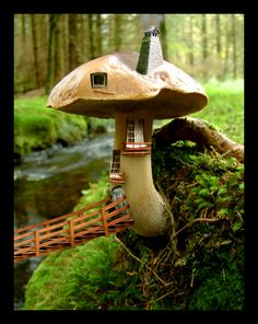 A tiny little mushroom house where little tiny fairies live...  they have tea brewing and tiny little cinnamon scones in the oven...