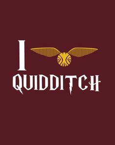 I LOVE QUIDDITCH