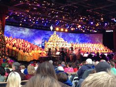 Epcot's Candlelight Processional schedule and tickets for purchase are now available. Although, tickets are not required to view the show, the dinner packages are highly recommended due to crowds, but also to enjoy a sit down dinner and viewing area for Illuminations: Reflections of Earth. Take a look at our FAQ page to answer any questions you may have and to get tips to make this wonderful experience even better... http://allears.net/tp/h_cpfaq.htm |  #Christmas #CandlelightProcessional