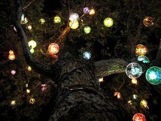 lights, magic, tree light, fairies, lighting, dream, trees, lanterns, garden