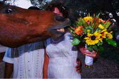 This horse photobombing someone's wedding picture
