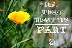 Who says travel has to be expensive? Find out how these travel bloggers double the length of their trip by cutting the costs of accommodation!