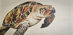 for sale on Etsy Sea Turtle woodburned and hand painted by PaynesGrae. Pyrography