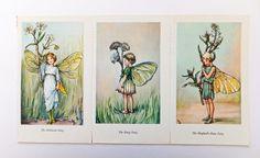 Three Cicely Mary Barker Prints, Flower Fairies £11.50