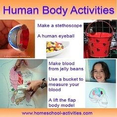 Human body activities for kids.