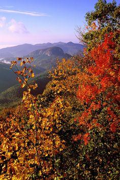 ✯ Looking Glass Rock - North Carolina