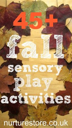 Great ideas for all sorts of fall sensory play