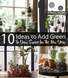 10 IDEAS TO ADD GREEN TO YOUR SPACE (SLIDESHOW): (1)Faux Terrariums (2)Add a Fig (3)Canning Jar Terrariums (4)Found Jar Bulbs, winter/spring bulbs in jars (5)Terra Cotta Bulbs (6)Copper Planter DIY (7)Pallet Display (8)Hanging Set (9)Bonzai! (10)Giant Terrarium *LOOKS VERY PRETTY, DOABLE, & w/ IDEA LINKS*