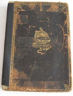 Edgar Allen Poe's The Gold Bug is the earliest known mystery detective stories ever written - Sullivans Island SC