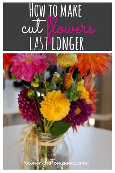 How to Make Cut Flowers Last up to a Month Longer!!