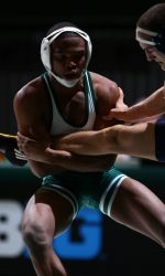 The Michigan State wrestling team will host the Green-White Wrestle-Offs on Friday, Nov. 1 at I.M. West, beginning at 6:30 p.m. All of the weight classes will be in action as the Spartans tune up for the upcoming regular season. Admission is free.