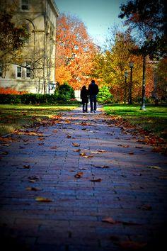Fall in Chapel Hill