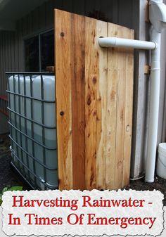 Harvesting Rainwater – In Times Of Emergency