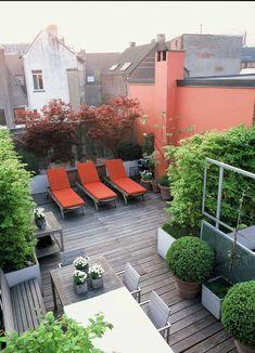 rooftop patio // #city #urban #garden #outdoors