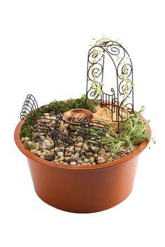 Black Mini-Garden Assortment in Red Eco Pot.