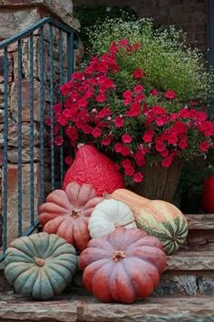 Fall color with pumpkins