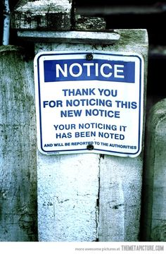 Thank you for noticing…