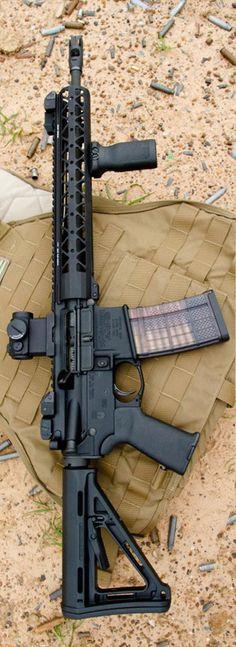 Rainier Arms AR setu