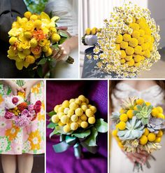 yellow flowers, button flowers, idea board, wedding flowers, yellow bouquets, fresh flowers, flower ideas, billi button, green weddings