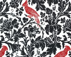 Premier Prints BARBER Black and Lipstick Fabric 1 Full Yard from The Fabric Dock