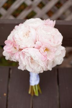 Blush peonies!! - would match well with baby's breath bridesmaid bouquets.