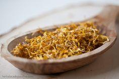 Calendula Sugar Scrub :: anti-inflammatory, anti-bacterial, anti-fungal, astringent, and vulnerary properties