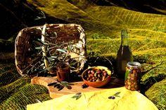 Olive e Olio Riviera Ligure D.O.P. , © Silvio Massolo