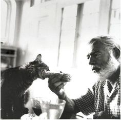 Ernest Hemingway with a cat