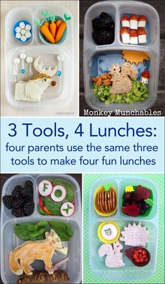 4 completely different lunches made using the same 3 tools | packed in @EasyLunchboxes