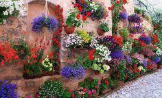beautiful garden wall