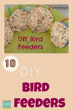 10 Bird Feeders Kids Love To Make from Frogs & Snails & Puppy Dog Tails