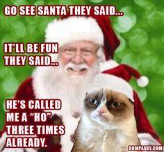 Grumpy Cat Christmas – 20 Pics