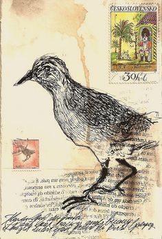 bird, art journal, mailart, thyer machado, mail art