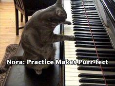 nora plays piano