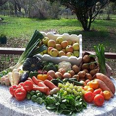 Eat Organic -  Create a garden that regenerates all by itself year after year