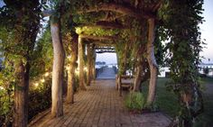 Beautiful arbor.