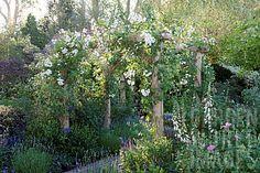 garden outdoor, garden dream, garden idea, garden inspir