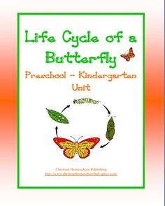 Butterfly Unit for #Preschool & #Kindergarten #homeschool