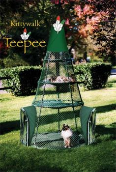 When the weather warms, consider letting your cat outside in a safe enclosure like the Kittywalk Teepee. It allows your cat to enjoy the outdoors from a safe place! http://moderncat.com/favefind/teepee-kittywalk
