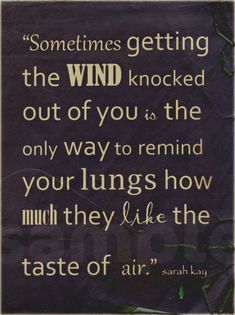 Sometimes getting the wind knocked out of you is the only way to remind your lungs how much they like the air. - Sarah Kay