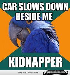 Paranoid Parrot: car slows down beside me...