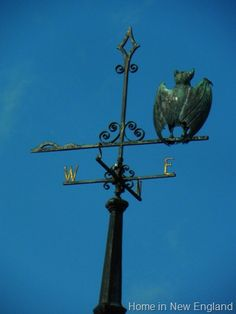 weather vane, bat weather