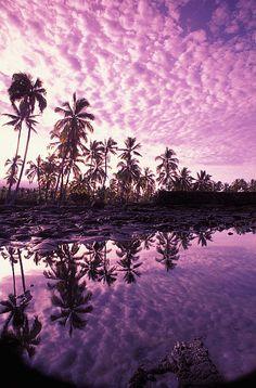 Hawaii,Bigisland,Pu'uhonua0 Honaunau (Place of Refuge) tidepools. Palm trees and  reflections at sunset.