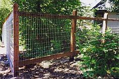 non climbing wire fence yard